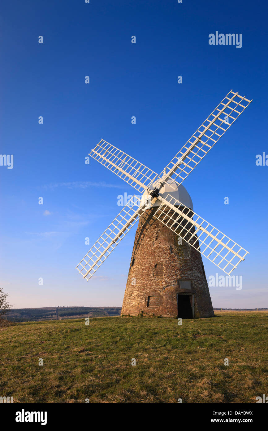 Halnaker windmill in the South Downs National Park Chichester West Sussex England - Stock Image