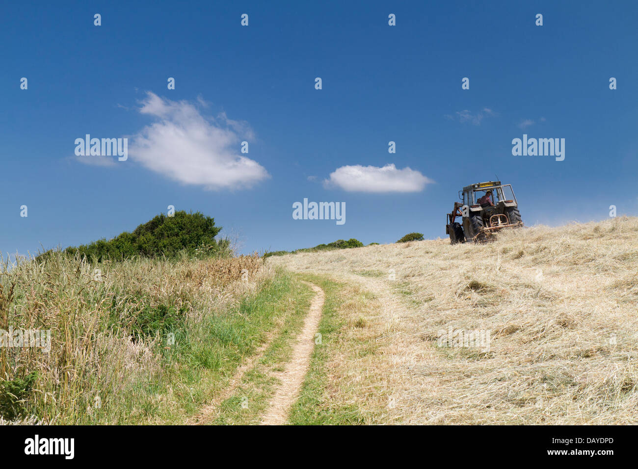 Make hay while the sun shines - Stock Image