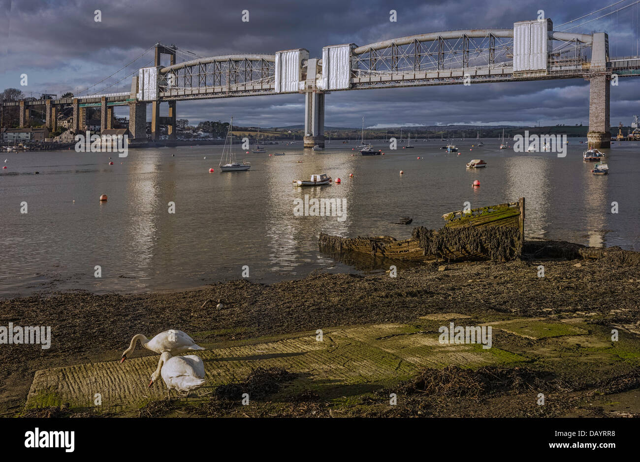 Prince Albert Bridge over the river Tamar with rotting boat and swans on river bank in Plymouth, Devon, England. Stock Photo