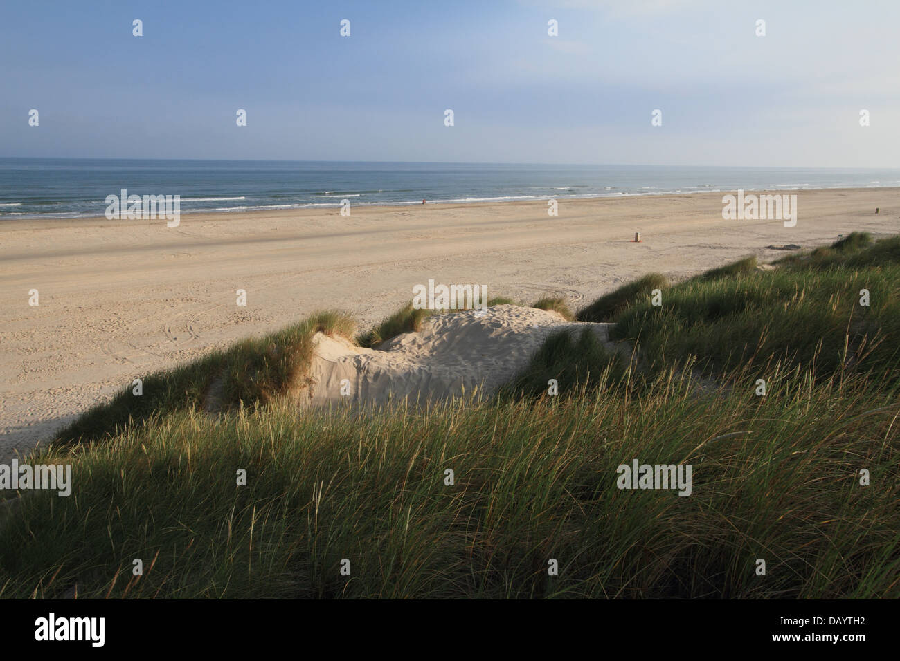 Wide, sandy beach and sand dunes at Blokhus, Denmark - Stock Image
