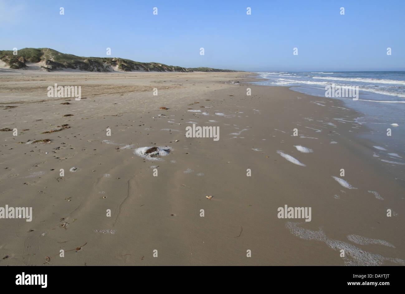 Wide, sandy beach at Blokhus, Denmark - Stock Image