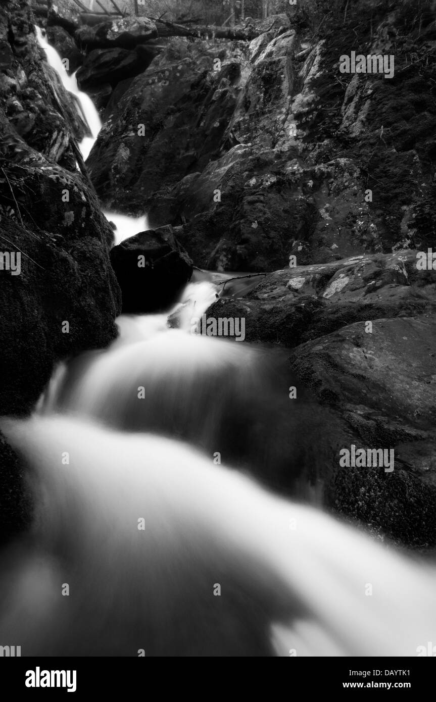 Black and white image of Lower Dark Hollow Falls, in Shenandoah National Park, Virginia. - Stock Image