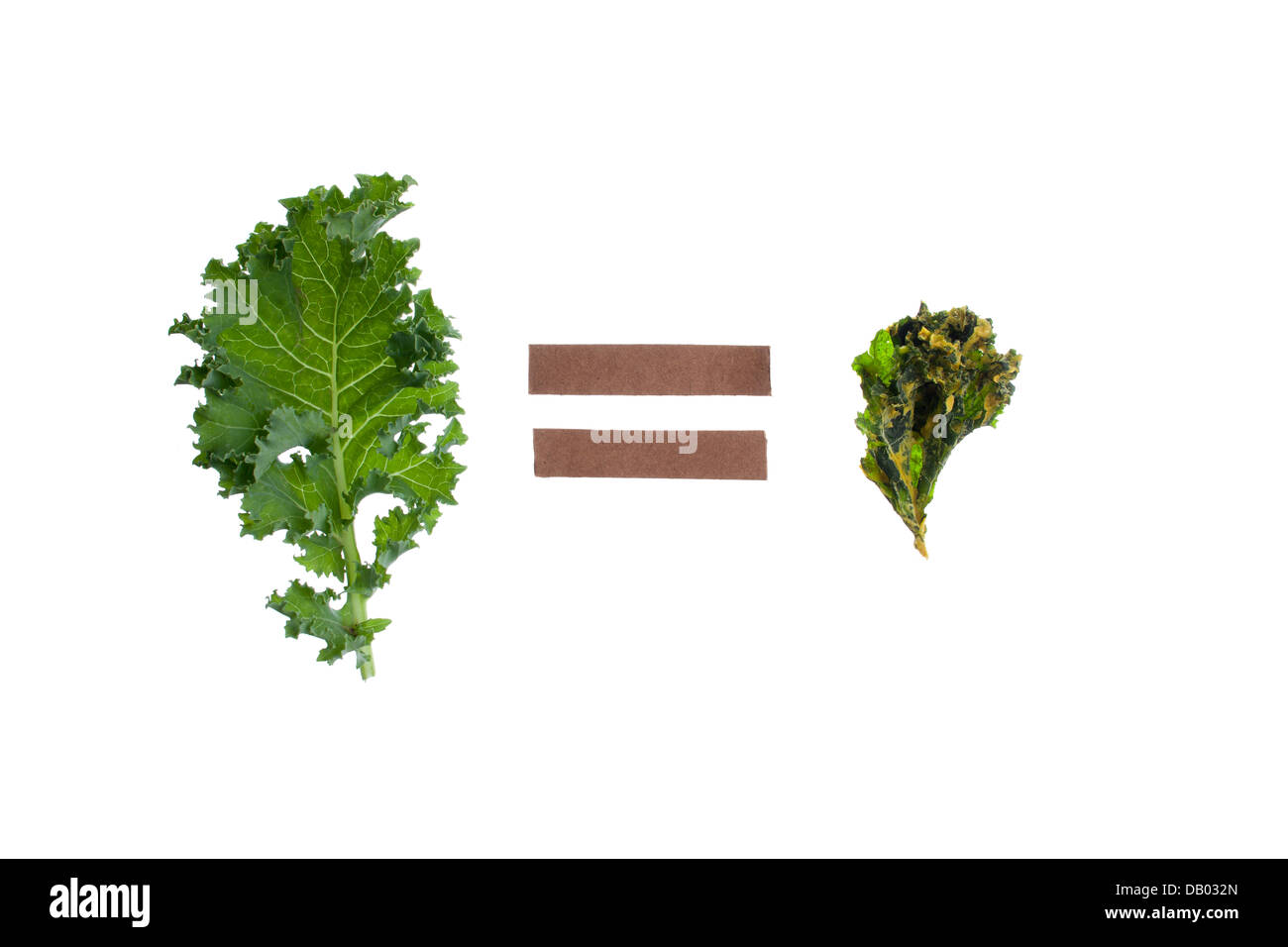 green kale equals kale chip on white studio background Stock Photo