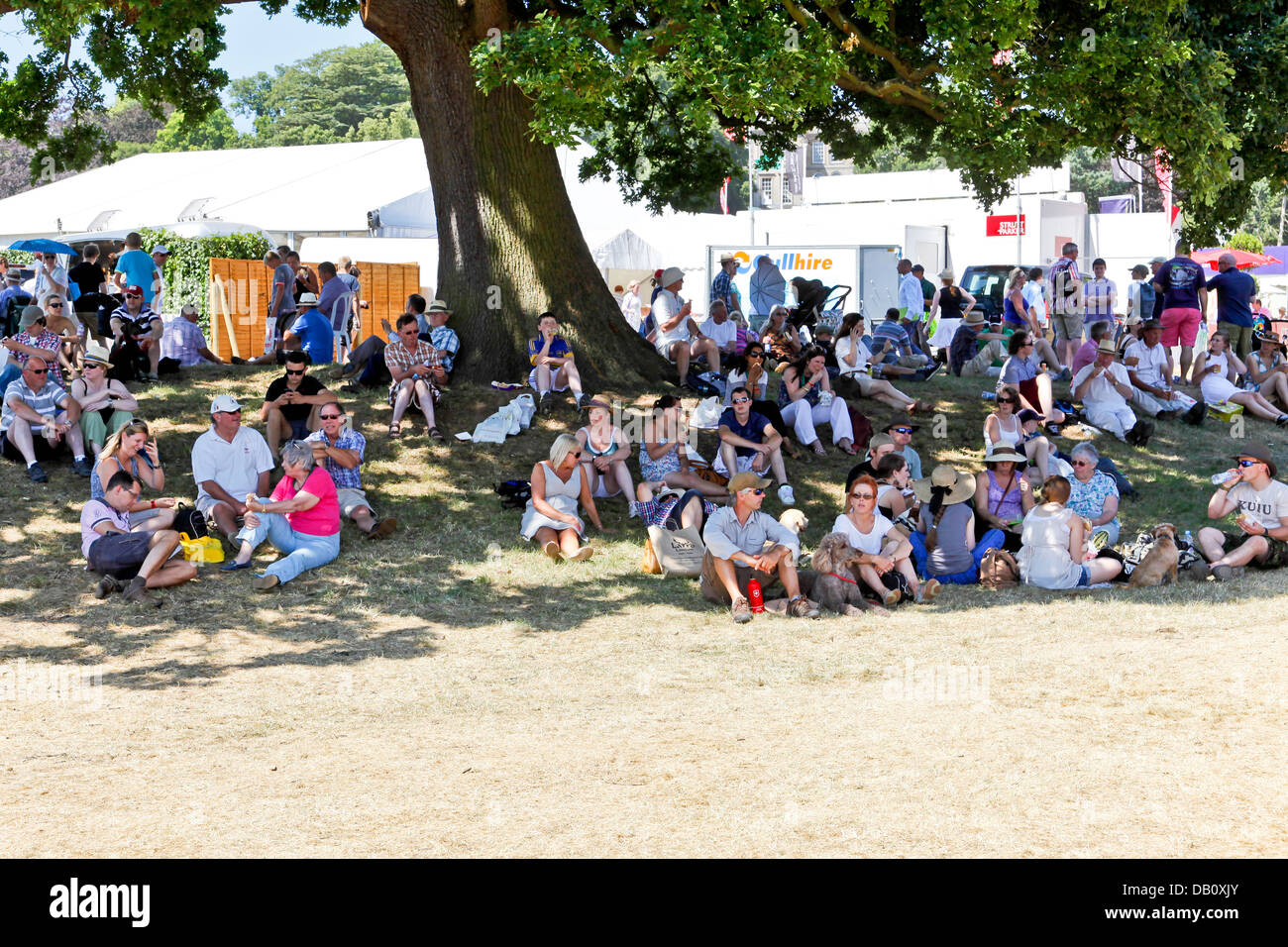 A large crowd of people sitting the shade of a large tree on a hot and sunny day Stock Photo