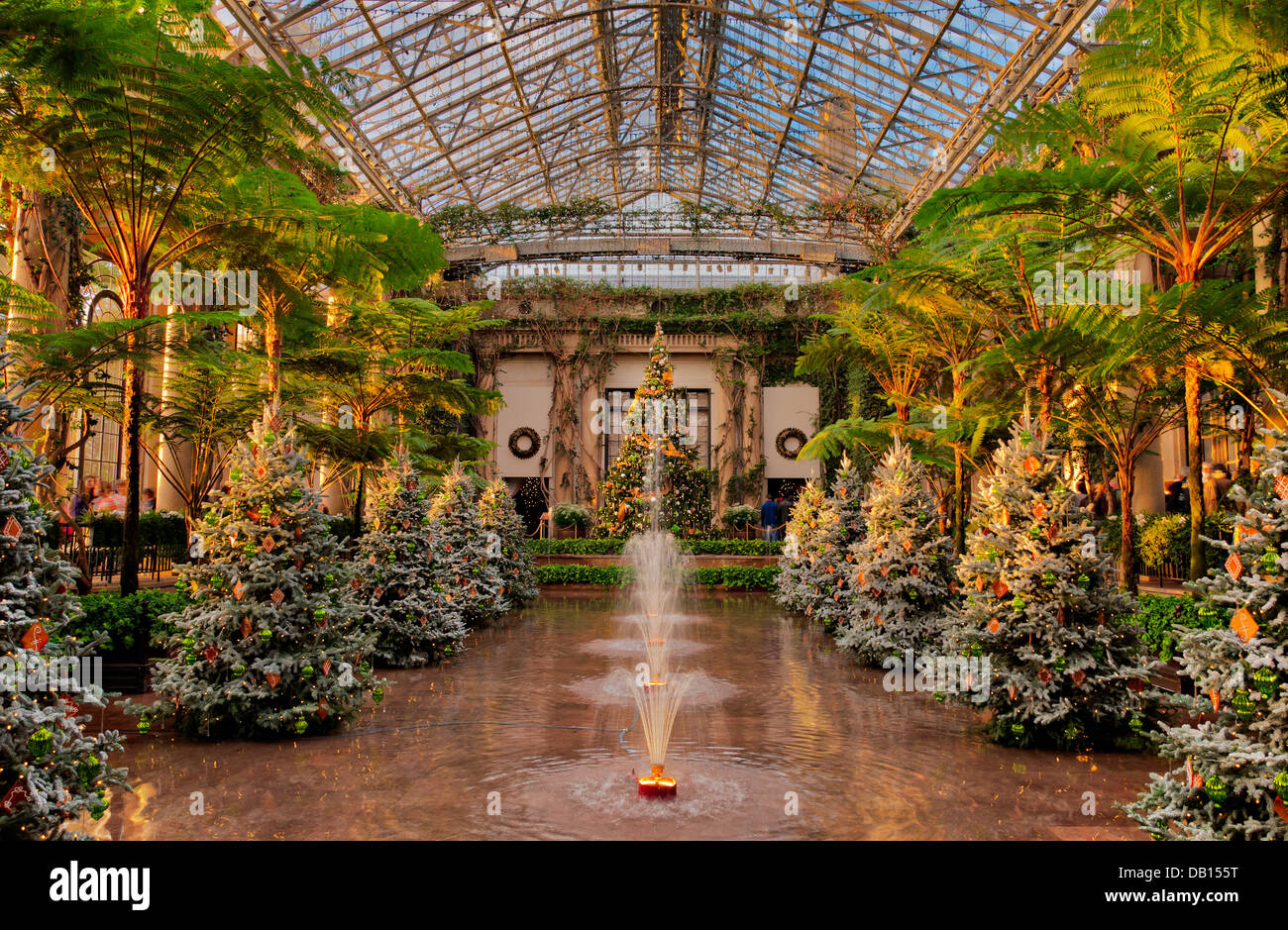 Christmas trees inside the Conservatory at Longwood Gardens Stock ...