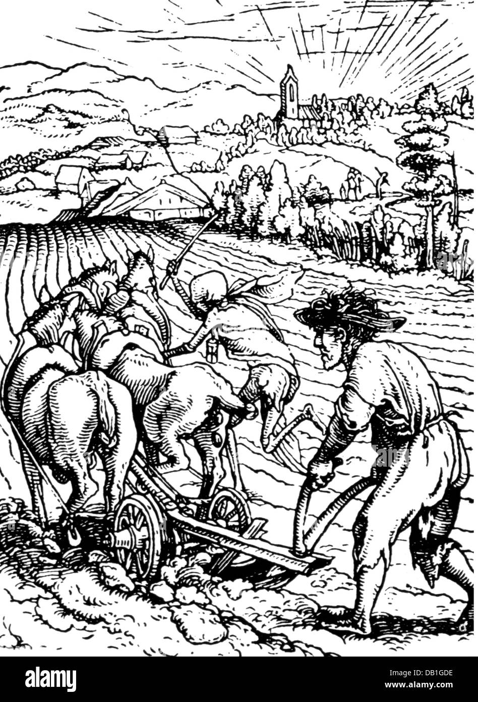 Agriculture, Agricultural Work, Plowing, The Farmer And