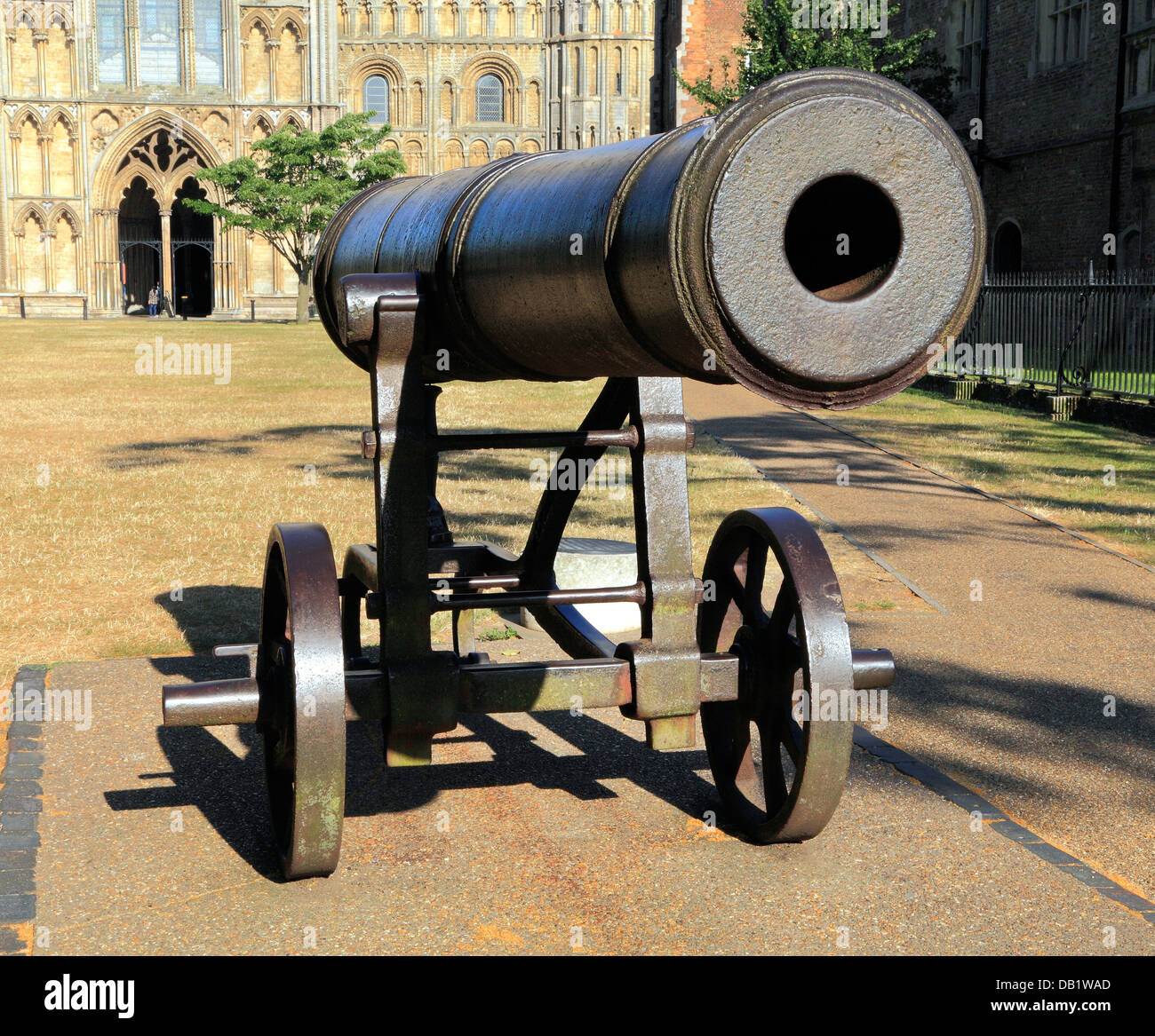 Ely, Russian Crimean War Cannon, Cambridgeshire England UK, Palace Green - Stock Image