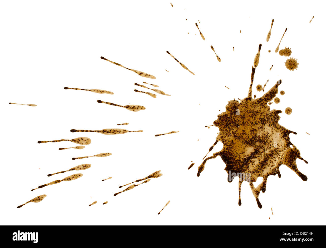 Coffee or mud splash isolated on white background. Clipping path - Stock Image