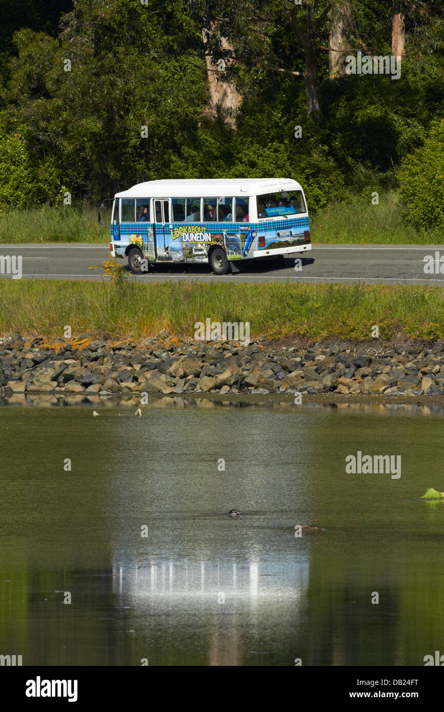 Tourist bus near Port Chalmers, Dunedin, Otago, South Island, New Zealand - Stock Image