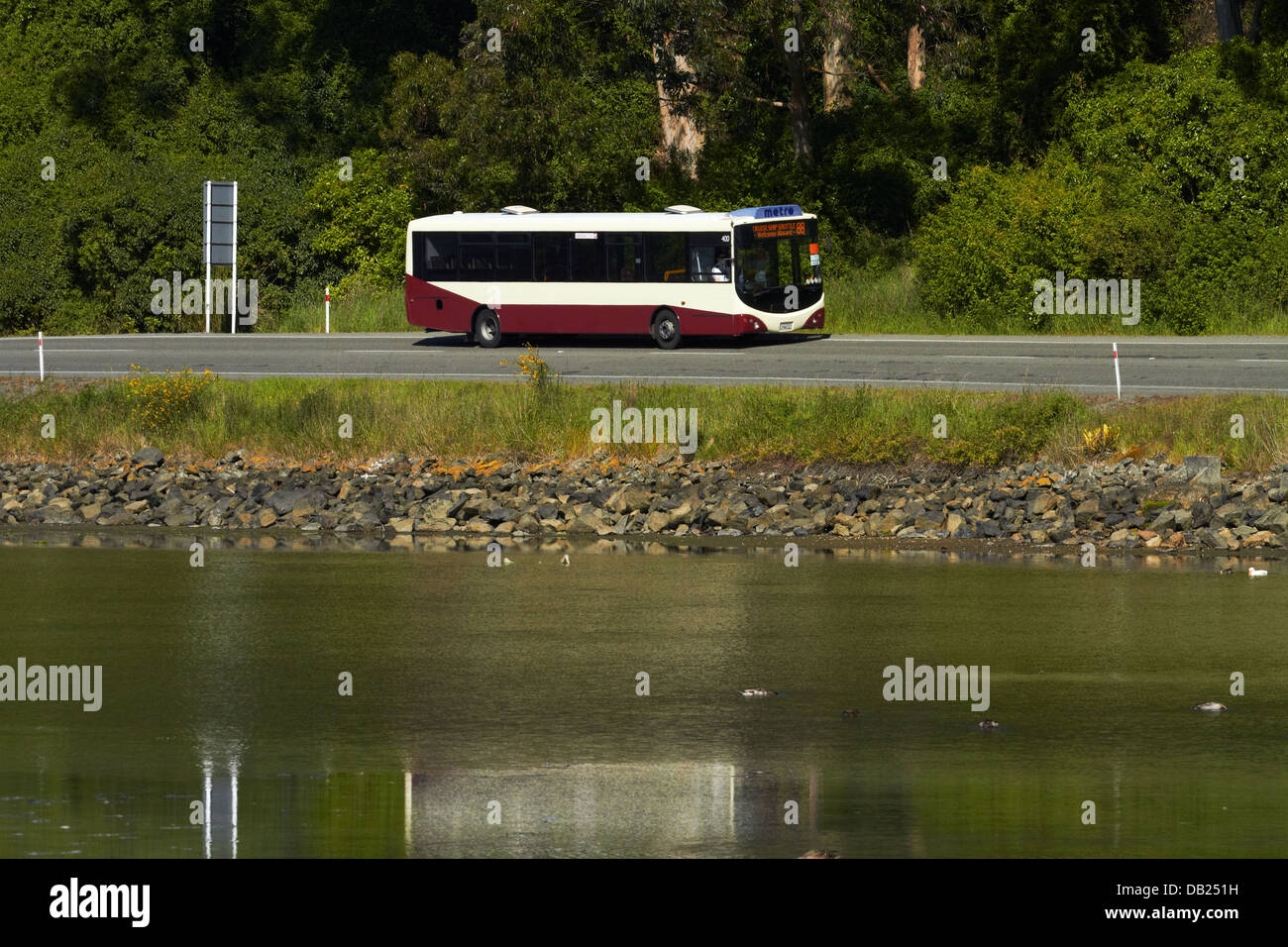 Bus beside Otago Harbour near Port Chalmers, Dunedin, Otago, South Island, New Zealand - Stock Image