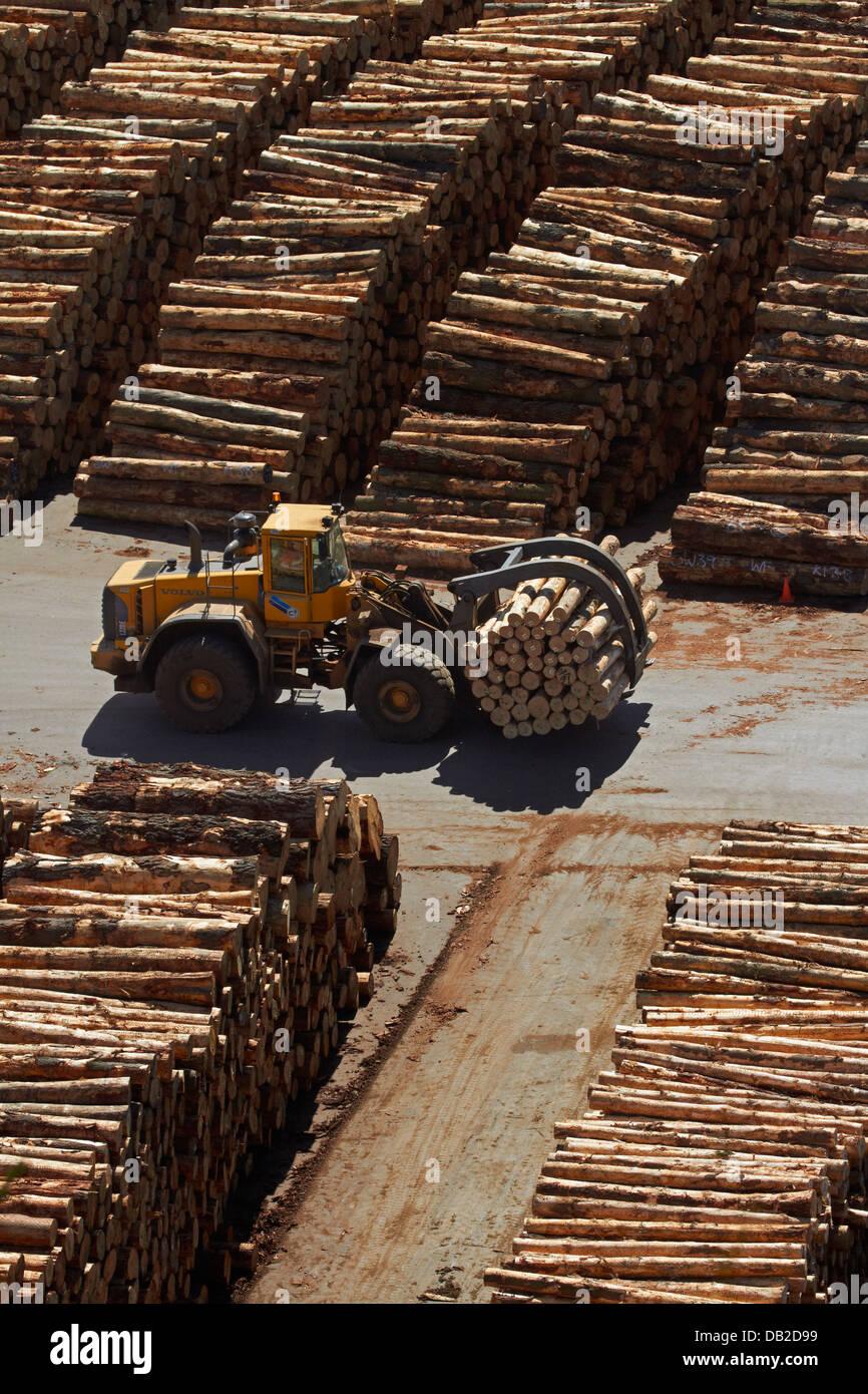 Log loader at Port Chalmers, Dunedin, Otago, South Island, New Zealand - Stock Image