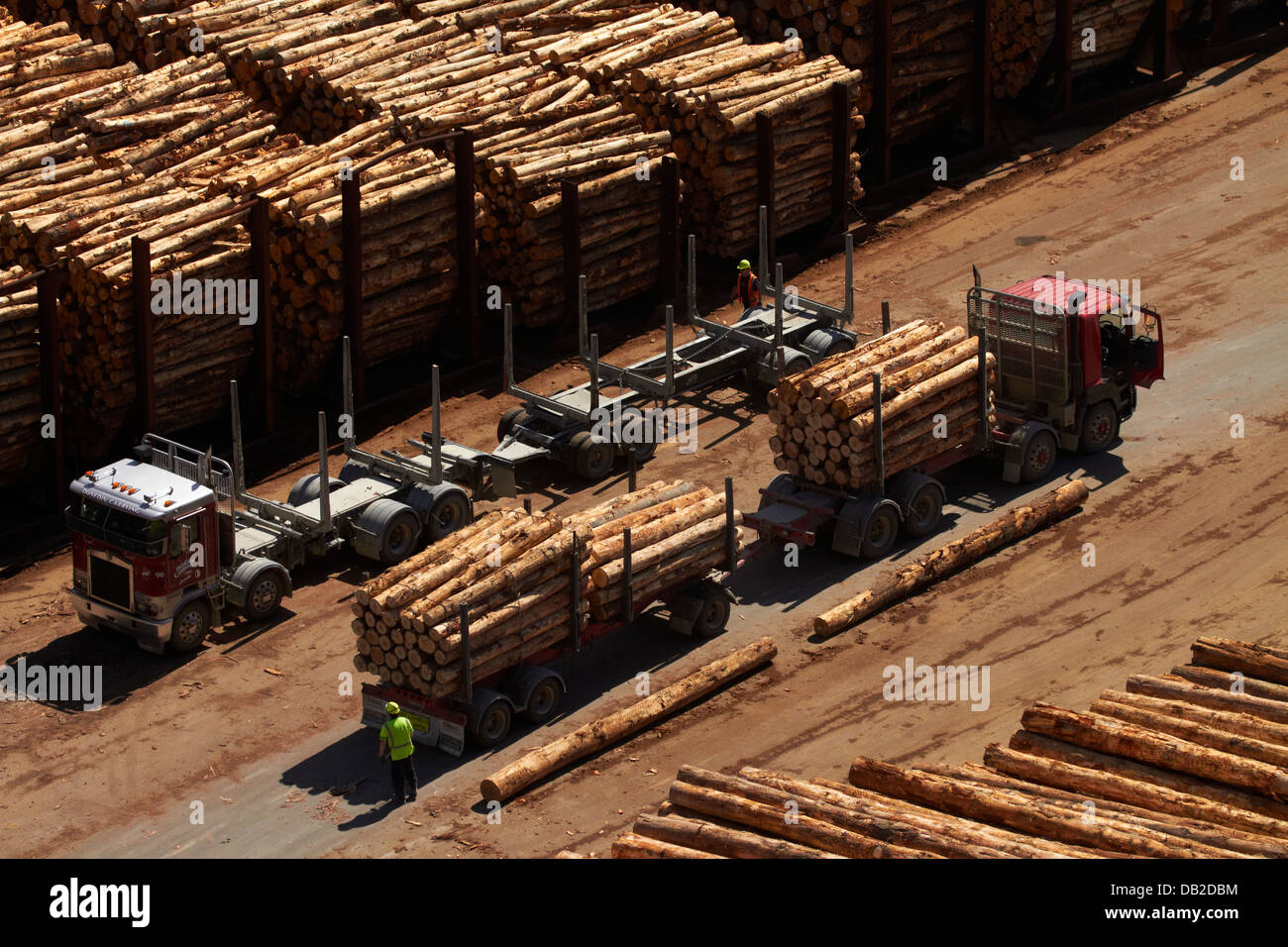 Logging truck delivering export logs to Port Chalmers, Dunedin, Otago, South Island, New Zealand - Stock Image
