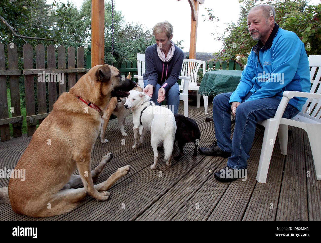 Christel and Manfred Klein, owners of the pet sanctuary, sit on the terrace with their dogs in Letschow, Germany, - Stock Image