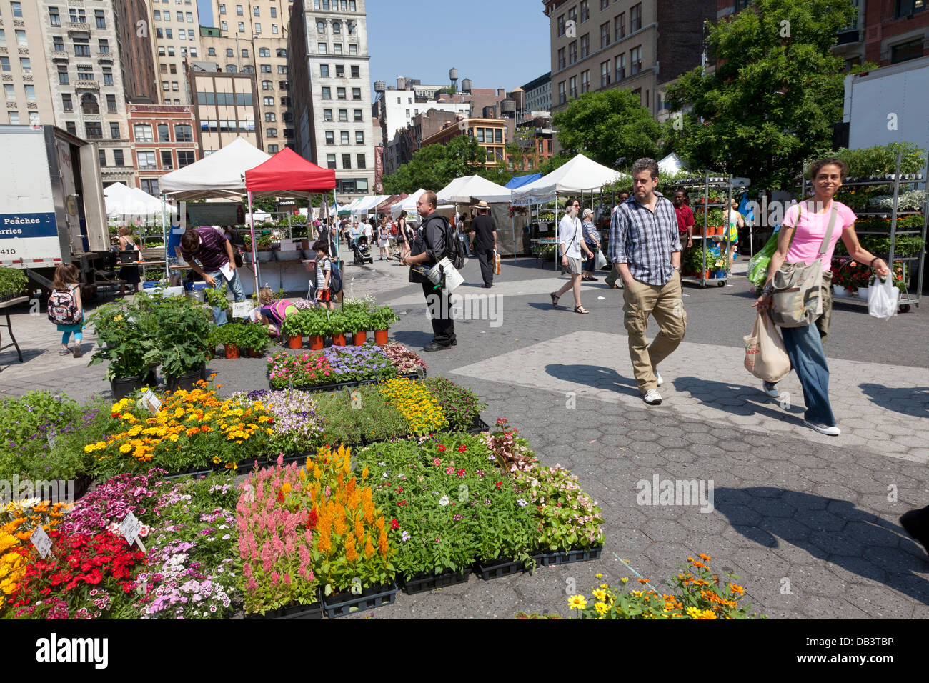 Plants for sale on Union Square greenmarket - Stock Image