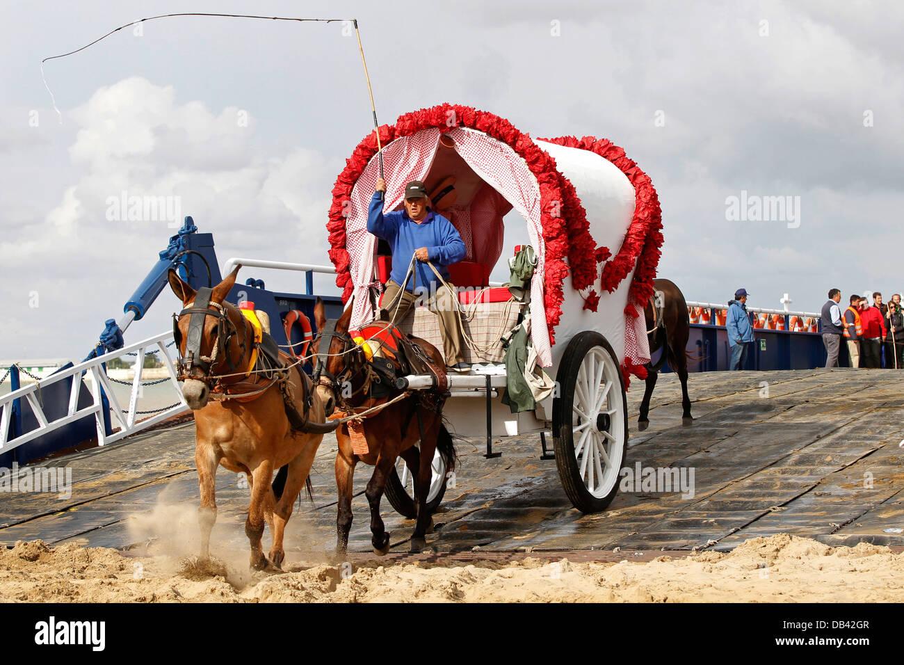 Traditional Spanish gypsy horse-drawn caravan, making the pilgrimage to El Rocio, arrive at the Donana National - Stock Image
