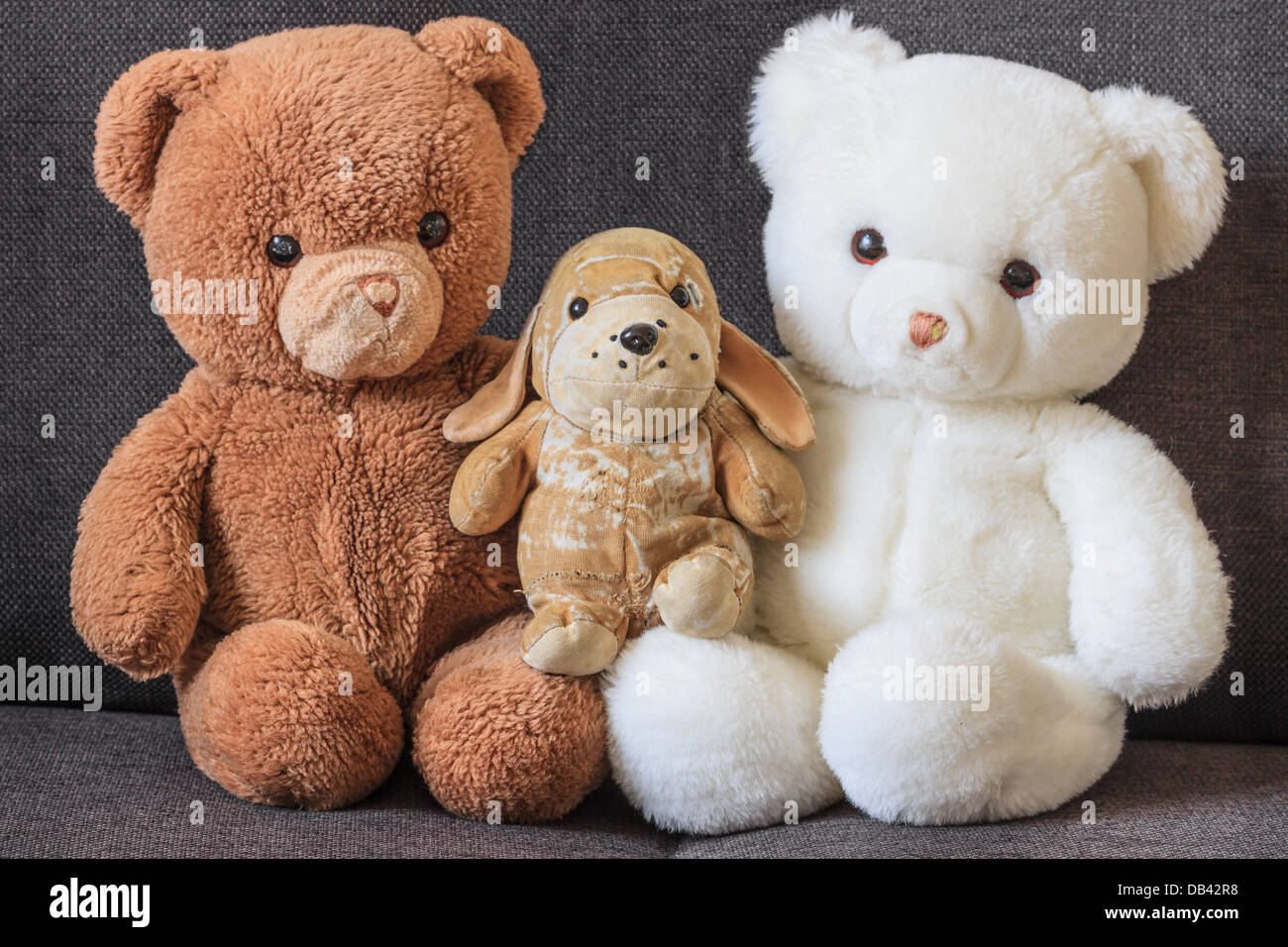 Cute old teddy bears and dog on couch (three) - Stock Image