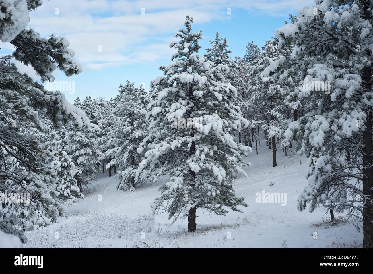 Flatiron Range, Boulder, Colorado USA - Stock Image