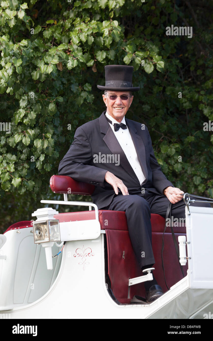 Carriage driver - Stock Image