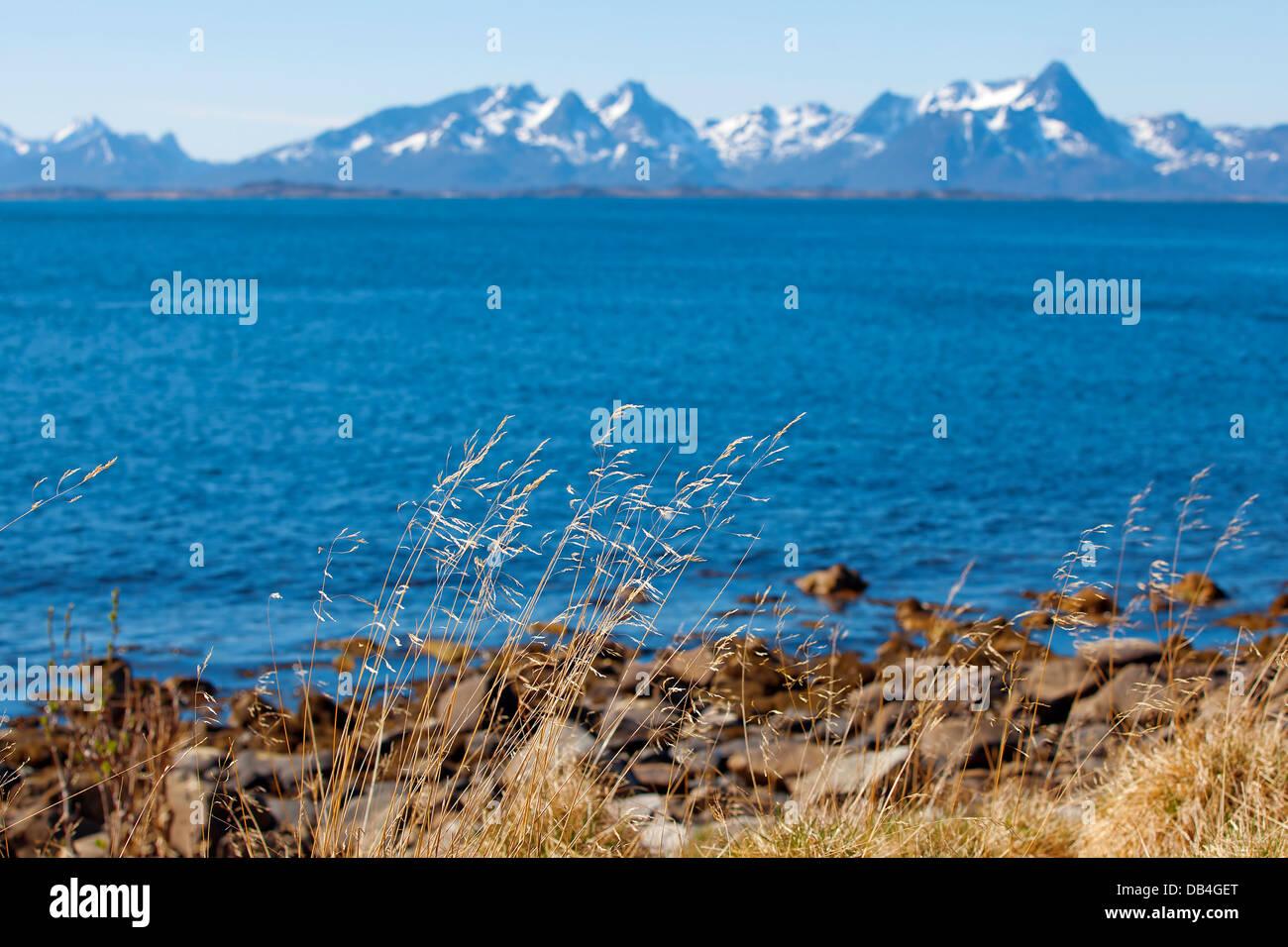 Norwegian fjord - Stock Image