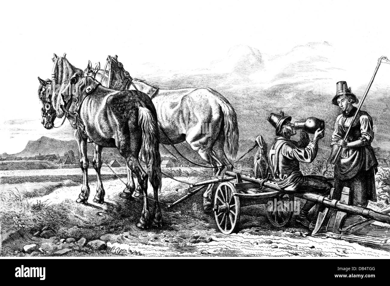 Country lad plow