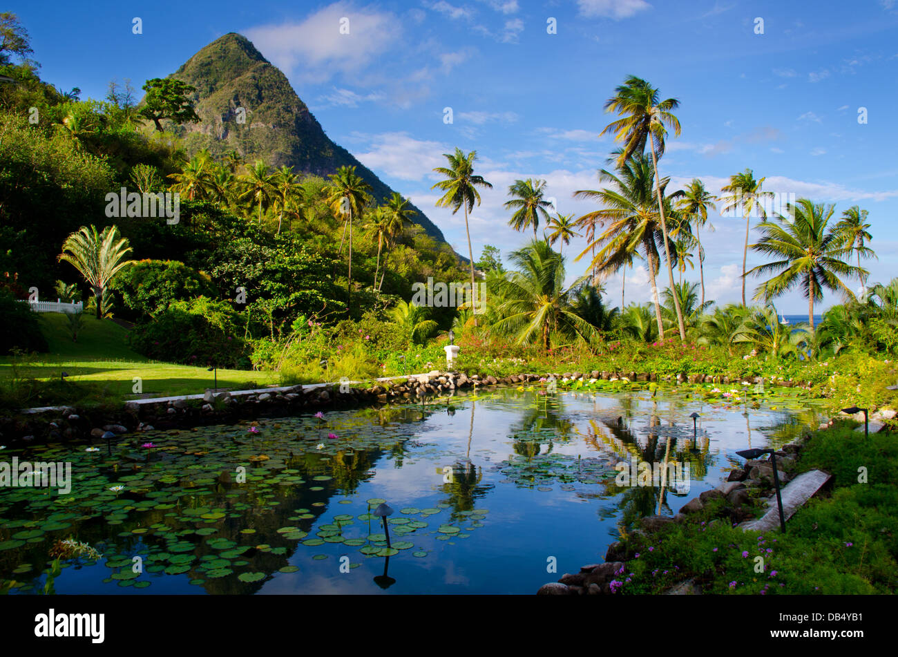 St Lucia - Stock Image
