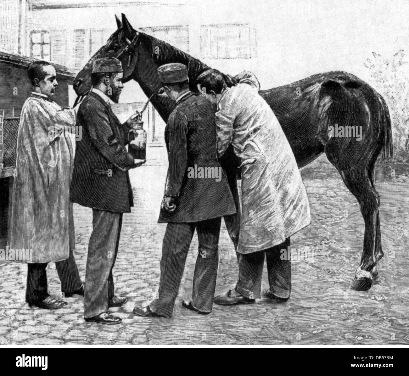 Roux, Pierre Paul Emile, 17.12.1853 - 17.12.1933, French physician (bacteriologist), full length, during the preparation - Stock Image