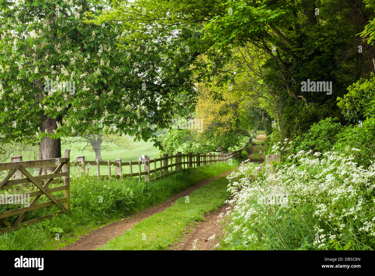 Former Barclays Chairman Bank Ring Fence Is Redundant And Should Be Scrapped besides Shoe Catalogue together with 3 Spring Latch together with Stock Photo Brick Edging Garden Grass Lawn 22587442 in addition 521539. on fence shopping