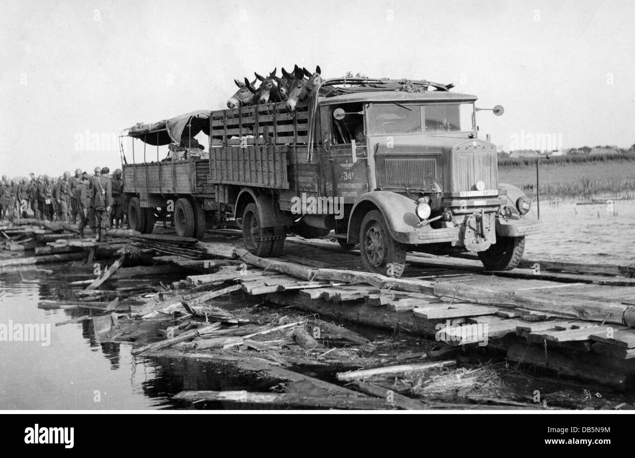 military, Italy, manoeuvre of the Italian army, late 1930s, lorry with mules, crossing a river over a makeshift - Stock Image