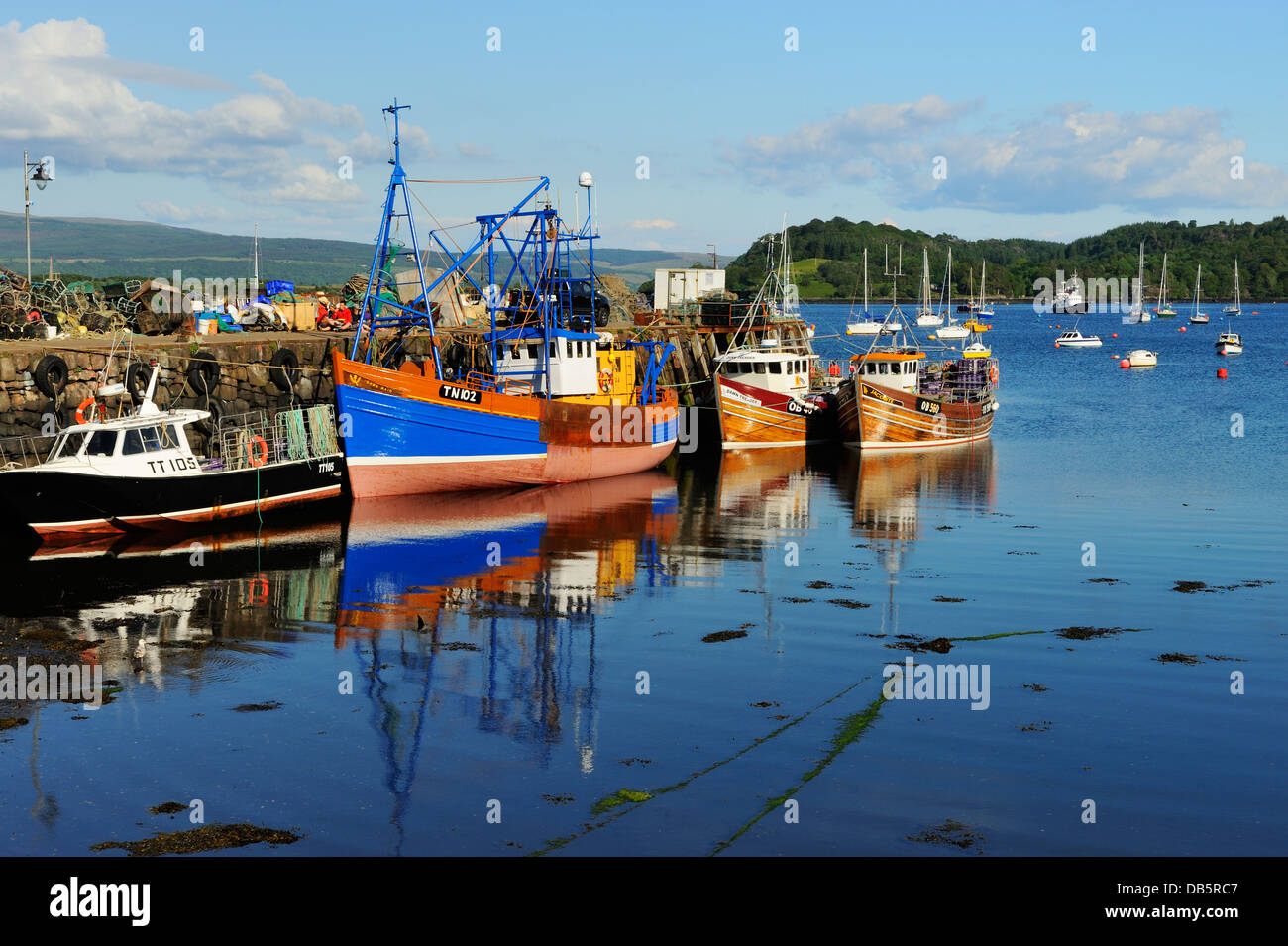 Colourful fishing boats in Tobermory harbour, Island of Mull, Scotland - Stock Image