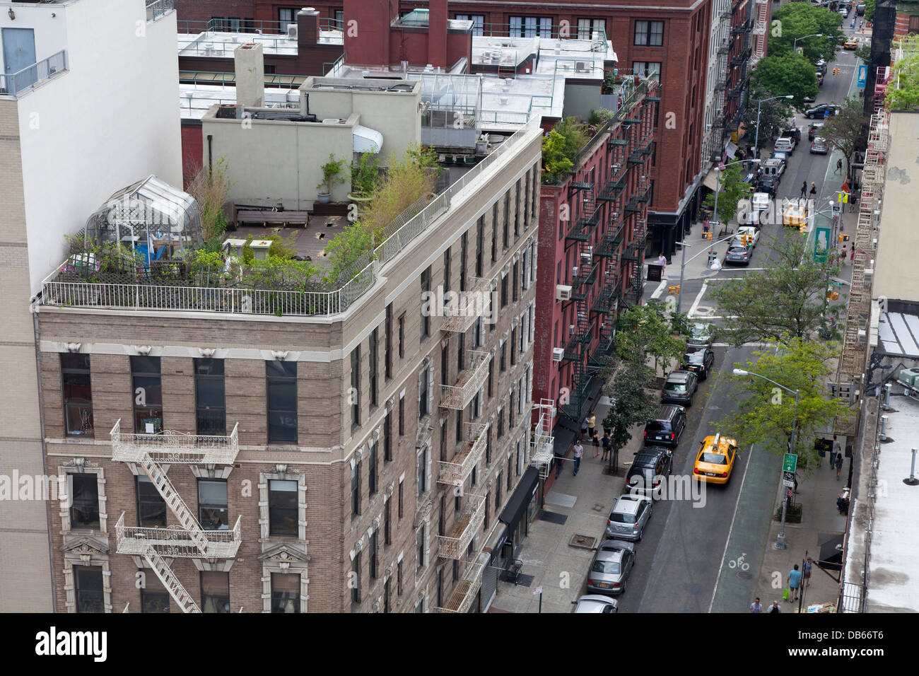 Garden and a greenhouse on the rooftop of an apartment building in New York City - Stock Image