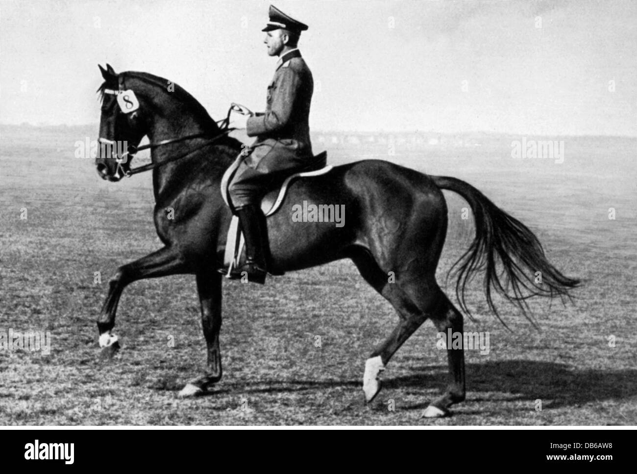 "Nazism / National Socialism, military, army, cavalry, Hanover cavalry school, captain Viebig on ""Gimpel"", 1935, Stock Photo"