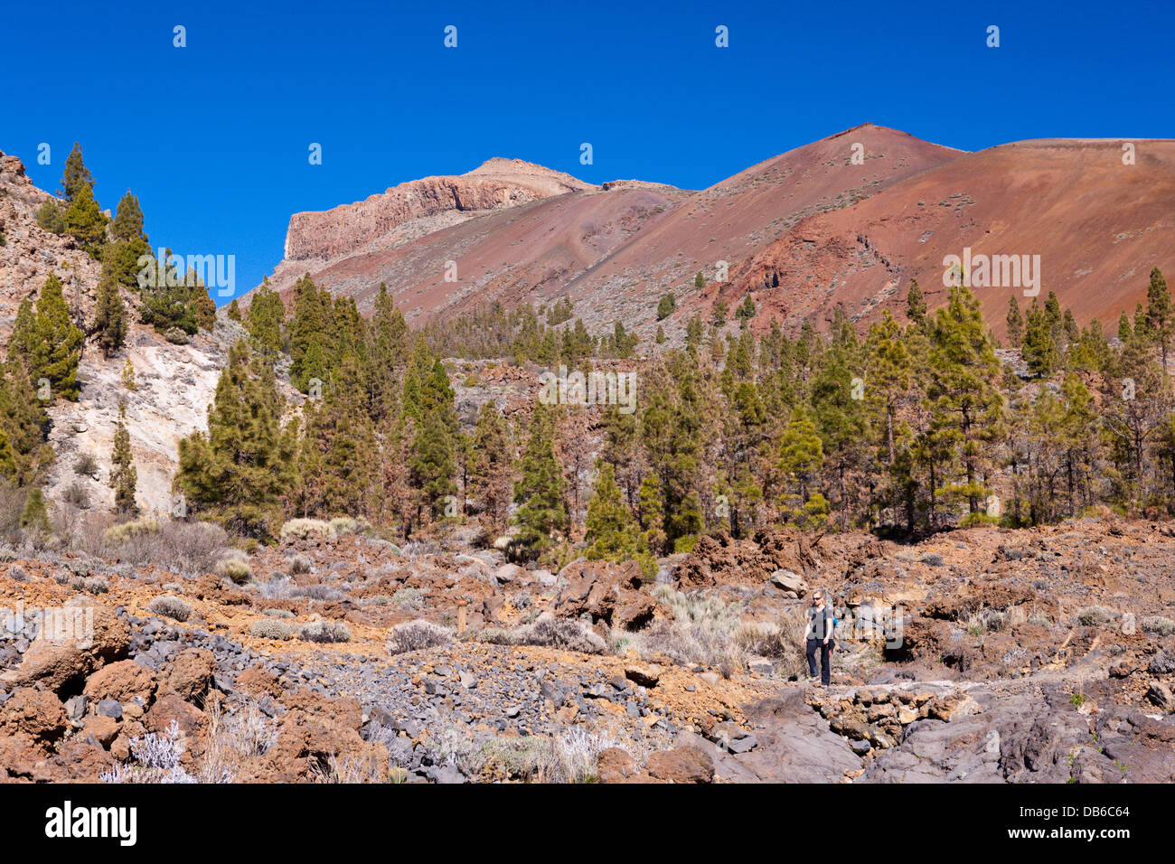 Hiking Tour to Paisaje Lunar near Vilaflor, Tenerife, Canary Islands, Spain - Stock Image