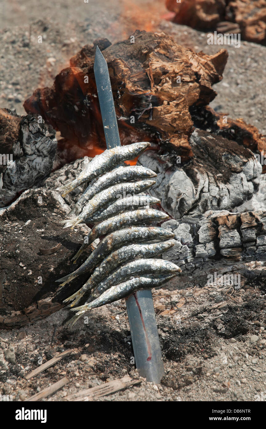 Skewers or Espeto of sardines, Torre del Mar beach, Malaga-province, Region of Andalusia, Spain, Europe - Stock Image