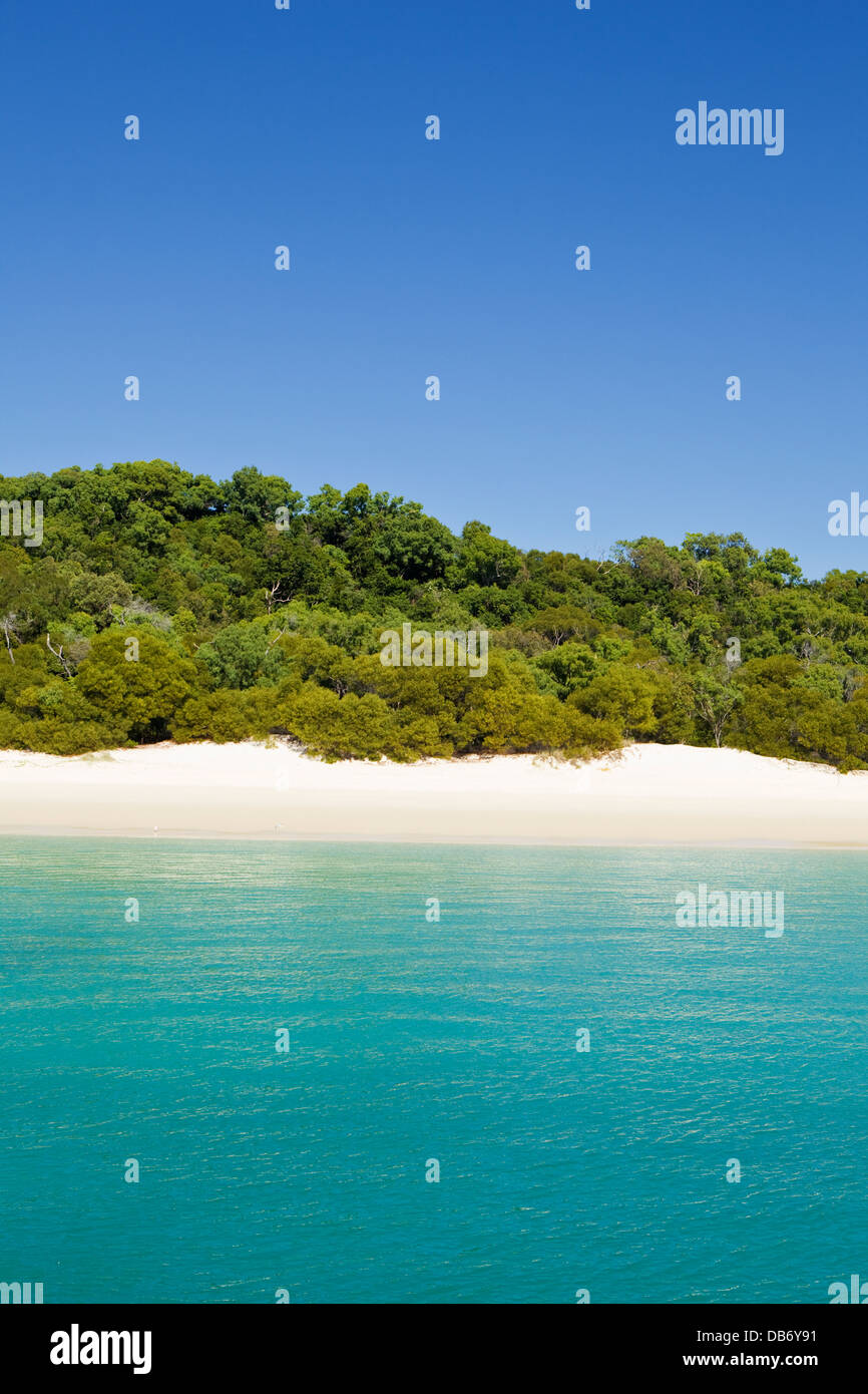 White sands and clear waters of Whitehaven Beach in Whitsunday Islands National Park, Whitsundays, Queensland, Australia - Stock Image