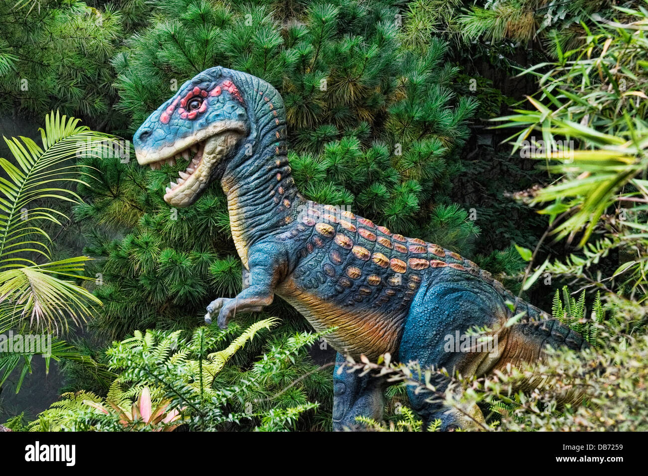 Tyrannosaurus  from the late Cretaceous period - Stock Image