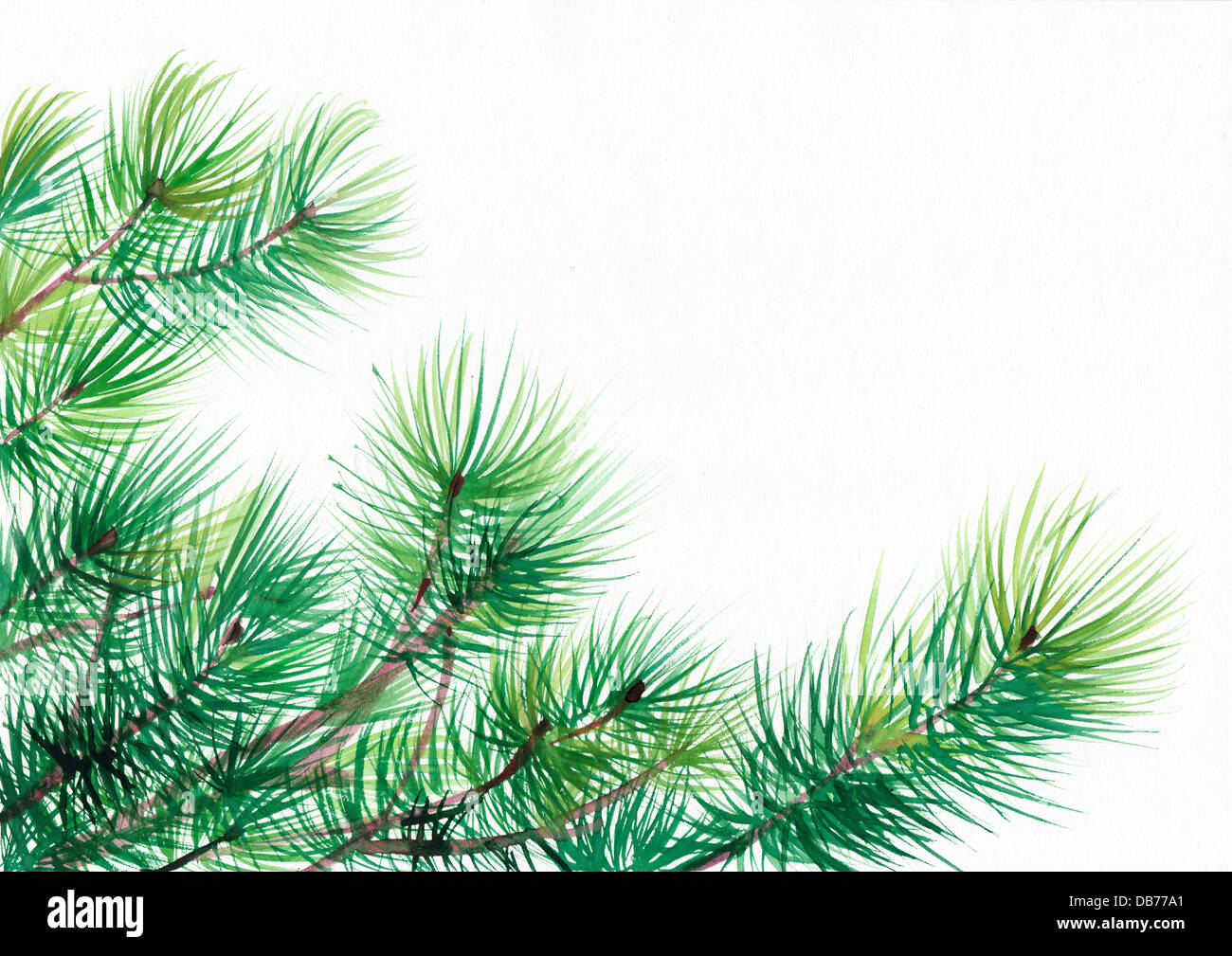 Branches Tree Painting High Resolution Stock Photography And Images Alamy