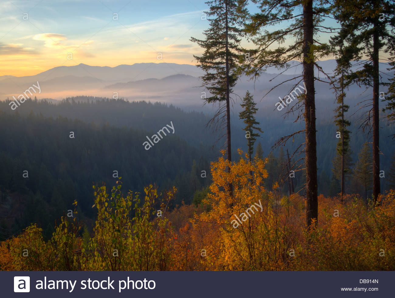 Idaho, North, Coeur d'Alene. An autumn view at dawn over the Coeur d'Alene National Forest near 4th of July - Stock Image