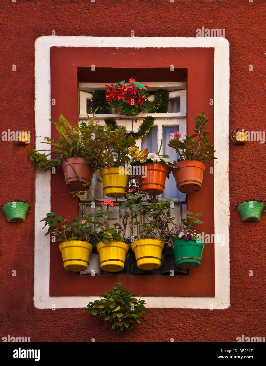 POTTED PLANTS hang from a window - GUANAJUATO, MEXICO - Stock Image