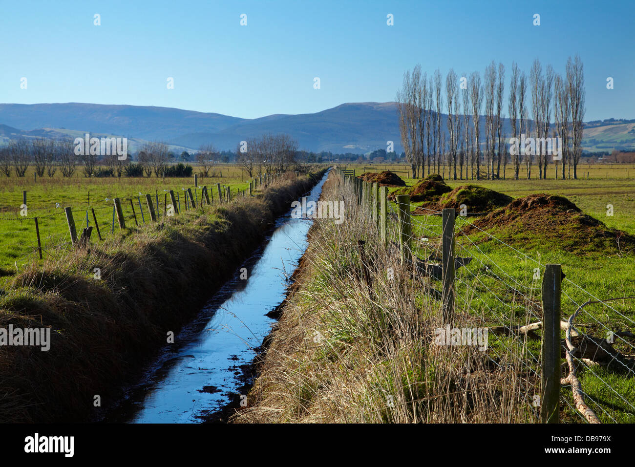 Drainage channel and fenced riparian strip, Taieri Plains, near Dunedin, South Island, New Zealand - Stock Image