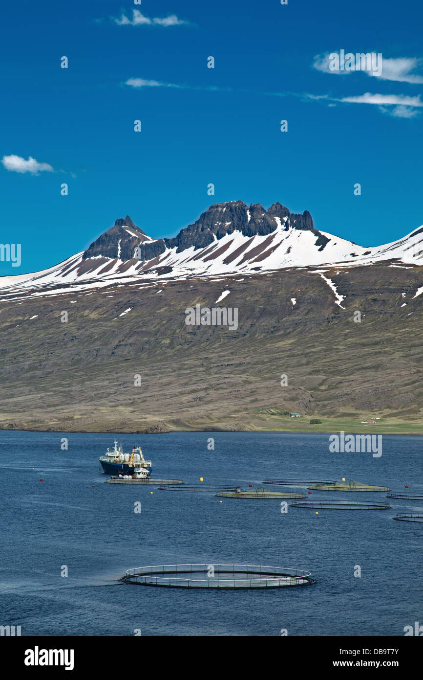 aquaculture, a salmon fish farm in an Icelandic fjord with on the back the mountains with snow. - Stock Image
