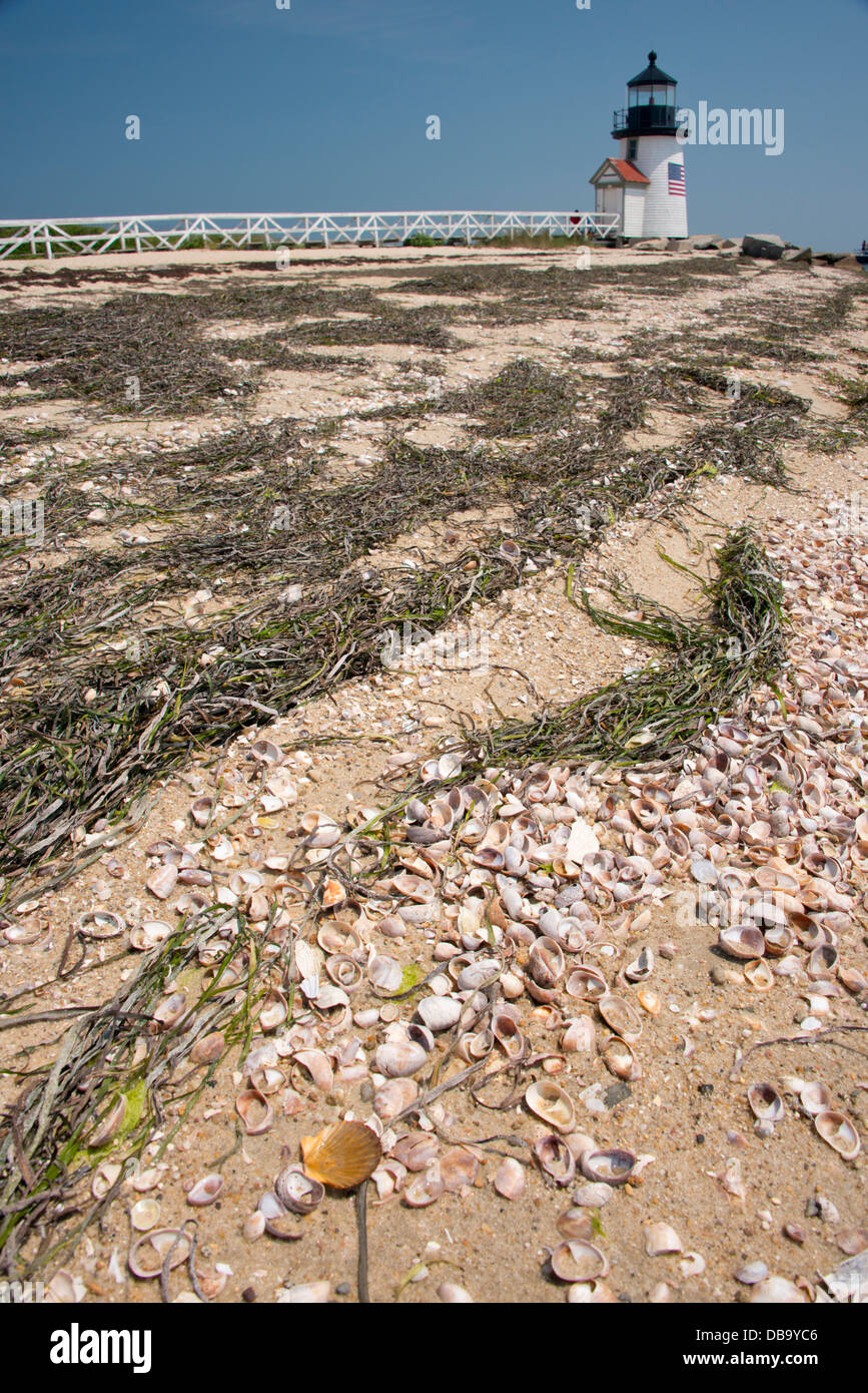 Massachusetts, Nantucket. Shell covered beach in front of Brant Point lighthouse, the second oldest lighthouse in - Stock Image