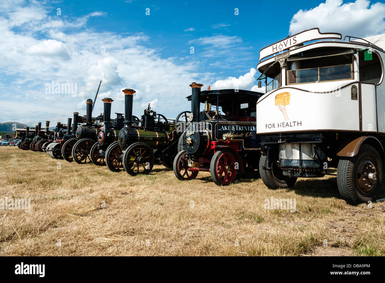 Line up of traction engines at Welland steam rally, near the Malvern Hills, Worcestershire, UK. - Stock Image