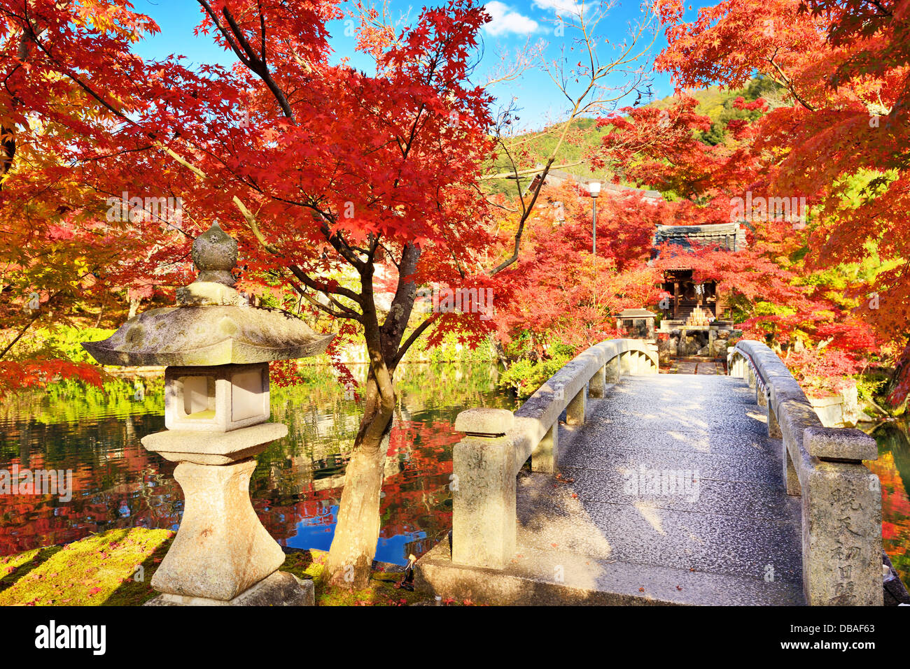 Fall foliage at Eikando Temple in Kyoto, Japan. 11/19 - Stock Image