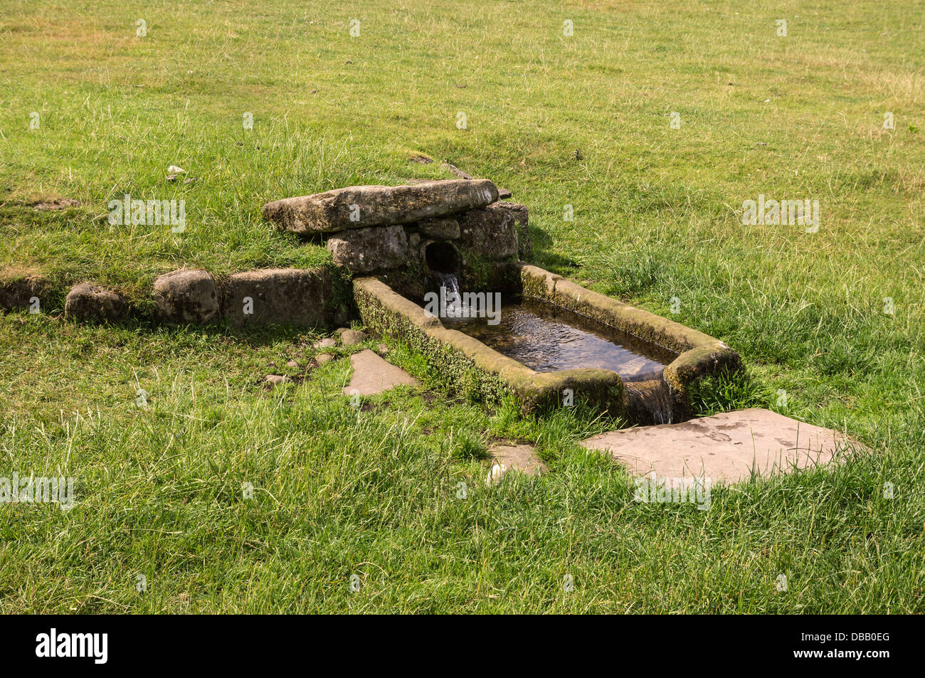 old water supply and water trough, Jervaulx Abbey, Wensleydale, North yorkshire - Stock Image