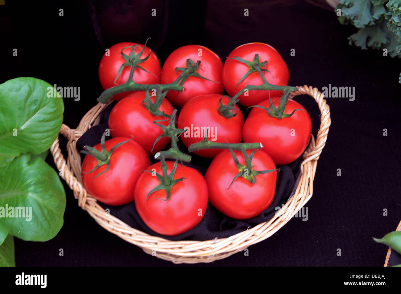 A basket of nine bright red tomatoes - Stock Image