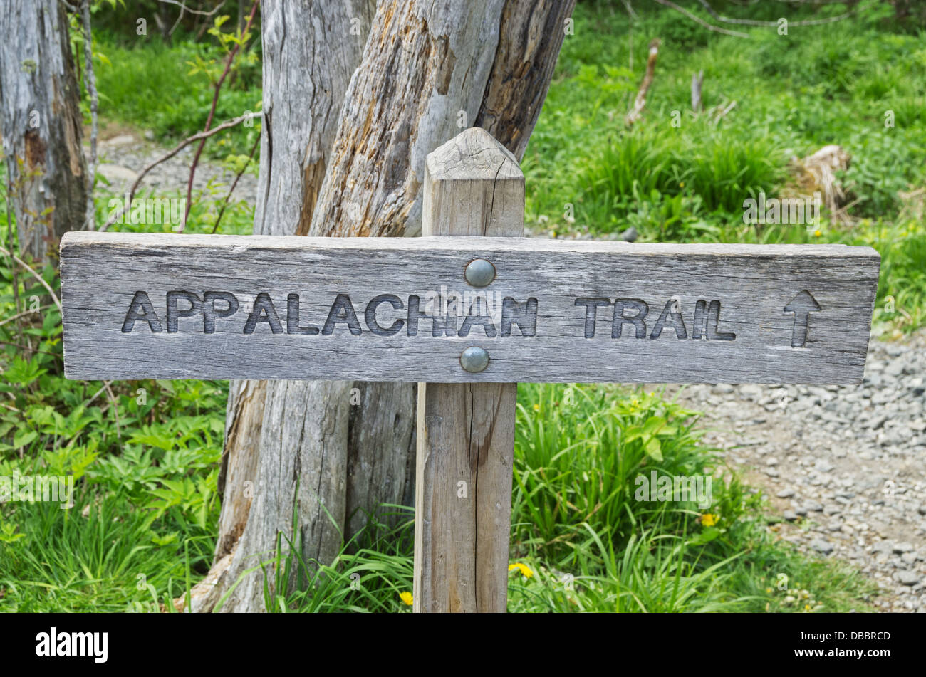 wood Appalachian Trail sign with trail behind - Stock Image