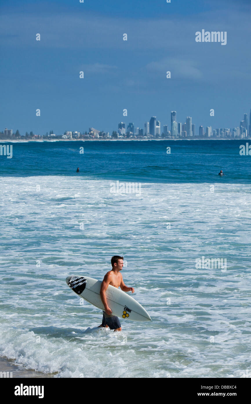 Surfer entering the water with Surfers Paradise skyline in background. Burleigh Heads, Gold Coast, Queensland, Australia - Stock Image