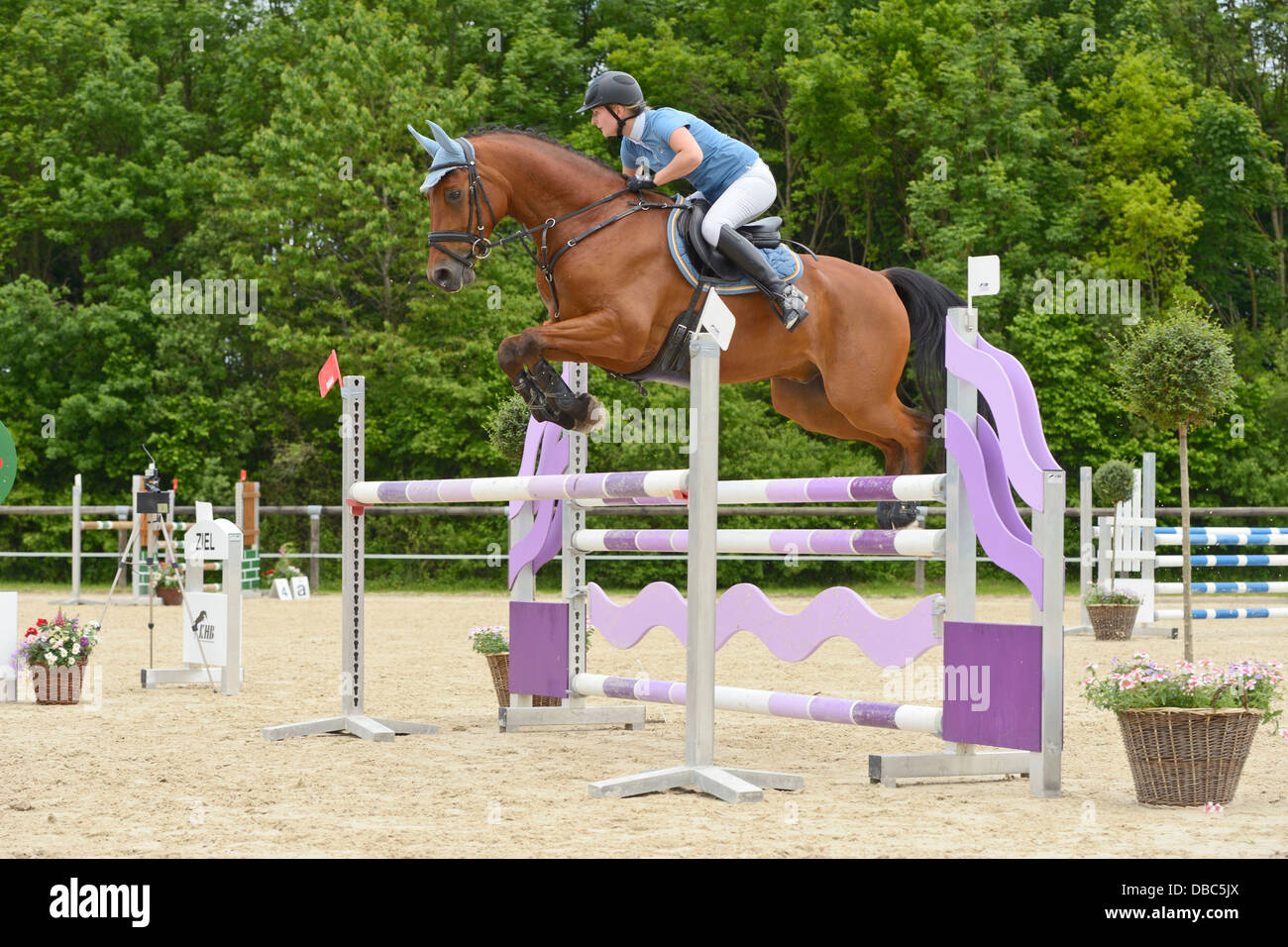 Oxer Jump High Resolution Stock Photography And Images Alamy