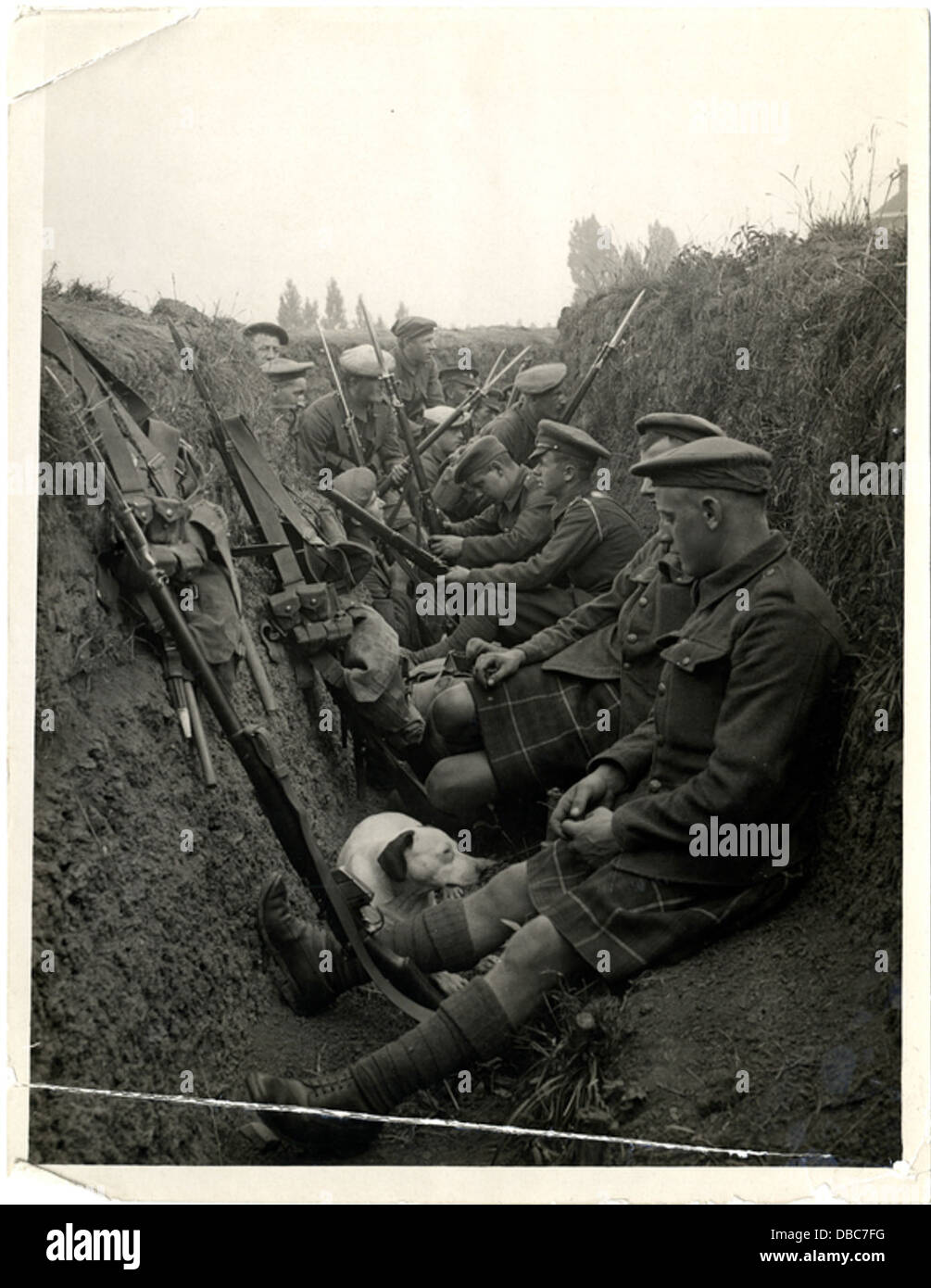 Highland Territorials in a trench (Photo 24-247) - Stock Image