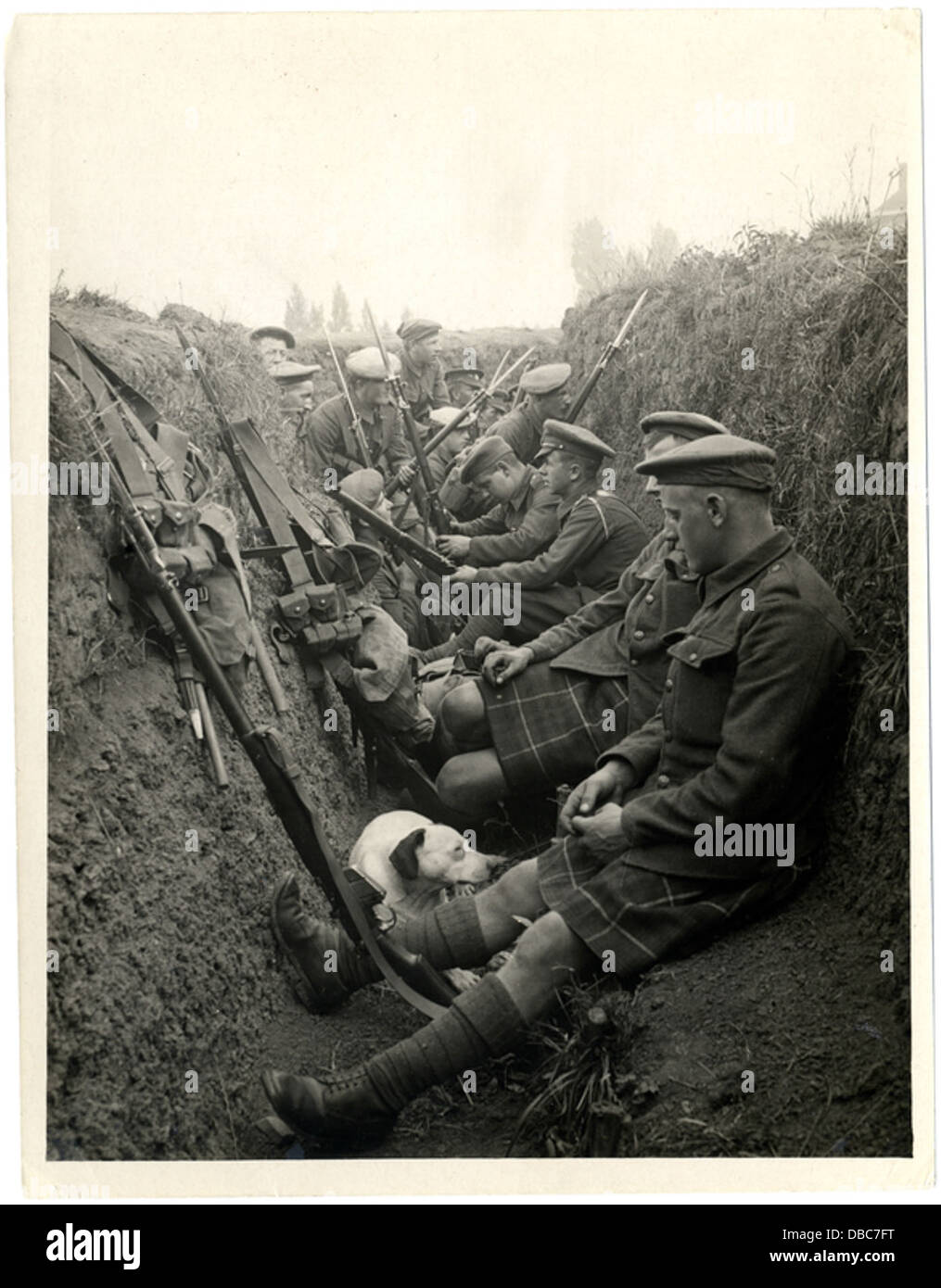 Highland Territorials in a trench (Photo 24-248) - Stock Image